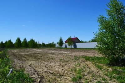 Более 900 многодетных семей из Щёлковского района получили земельные участки с 2011 года