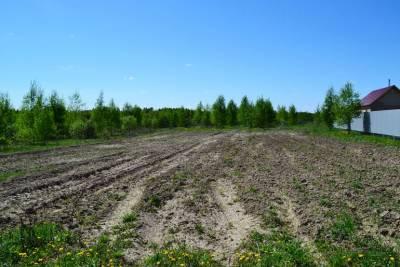 Более 100 многодетных семей получат земельные участки в этом году