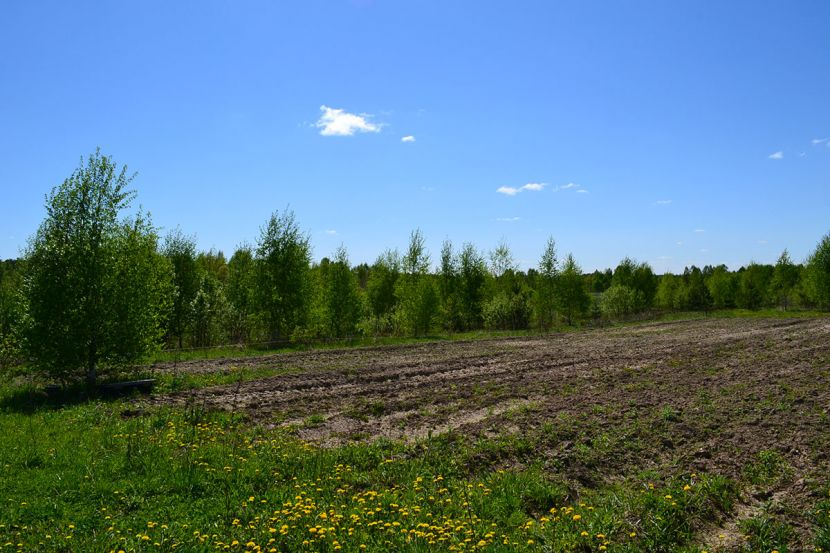 Земельный участок в деревне Огуднево, Щёлковский район